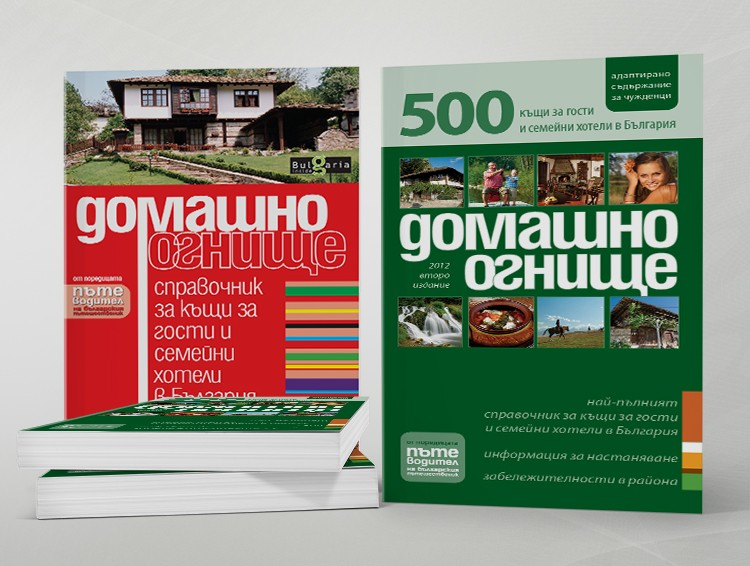 Domestic Fireplace - bulgarian edition - cover